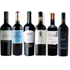 Copia-de-Kit-Carmenere-02