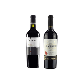 Copia-de--Kit-Carmenere-03