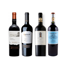 Kit-Carmenere-new