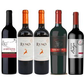 Kit-de-Vinhos-Tintos-Selecao-Exclusiva-Vivavinho-5-garrafas-750ml