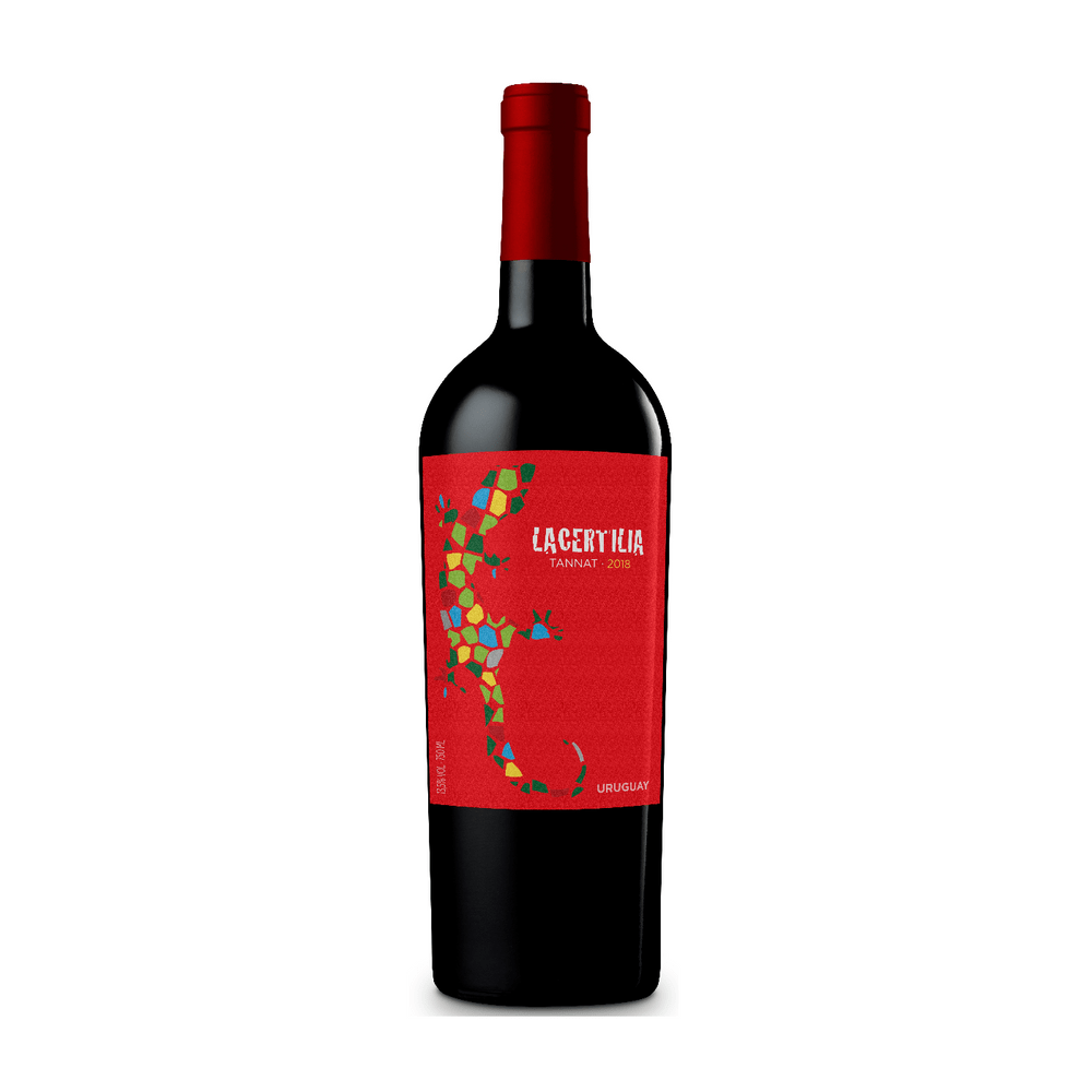 Vinho-Tinto-Uruguaio-Braccobosca-Lacertilia-Tannat-750ml