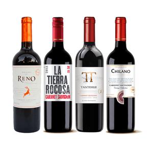 kit-de-vinhos-tintos-cabernet-sauvignon-mix-4-garrafas