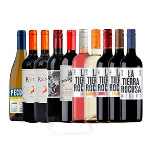 kit-de-vinhos-abasteca-sua-adega-mix-10-garrafas