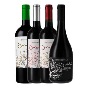 Kit-de-Vinhos-Degustacao-Uruguai-4-garrafas-750ml