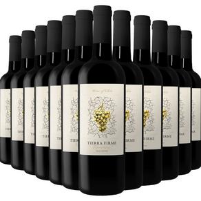 Kit-de-Vinhos-Tintos-Chilenos-Tierra-Firme-Carmenere-12-garrafas-750ml